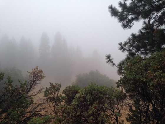 Dark clouds rolled over Pollock Pines Thursday while some parts in the higher elevations took a beating from hail and other severe weather. See more photos by David Bienick of the summer Sierra storm.
