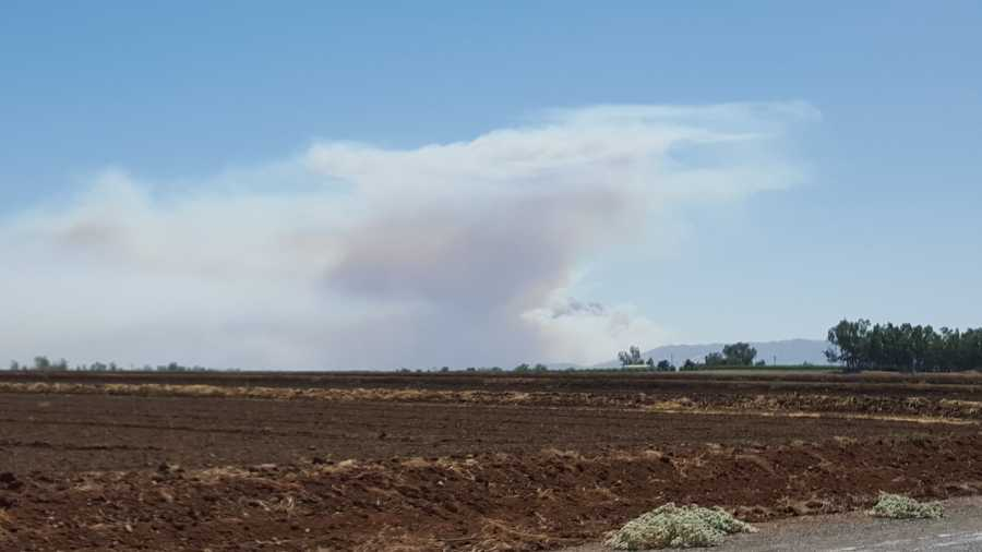 A wind-fueled grass fire burning Wednesday near Lake Berryessa forced evacuations. (July 22, 2015)