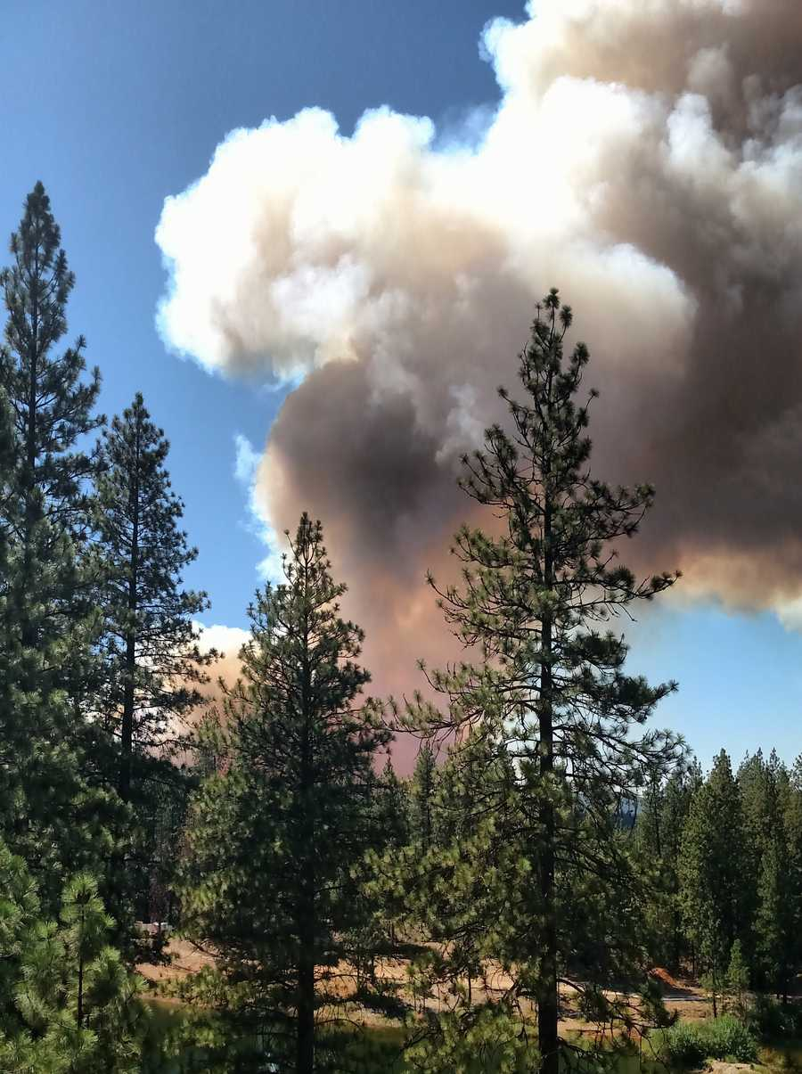 Gray clouds of smoke puffed up from the Lowell Fire in Nevada County.