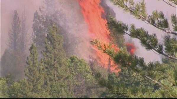 Flames climbed through trees in the steep terrain of Nevada County.
