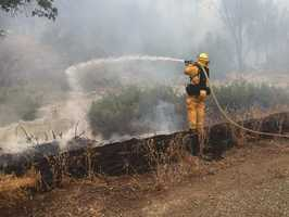Here's a photo of one of the thousands of firefighters working hard to contain the so-called Rocky Fire.
