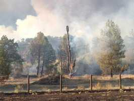 KCRA 3 reporter Claire Doan captured this photos of a burned-out area from the Rocky Fire.