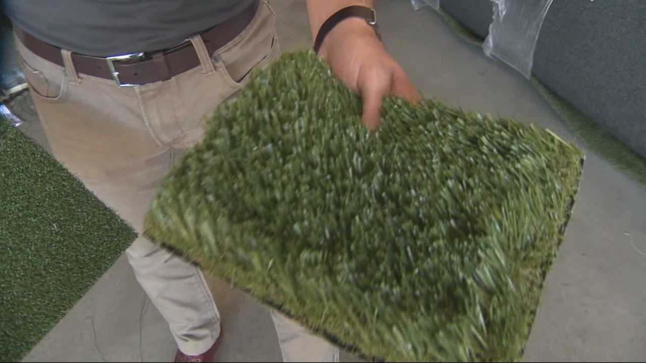 Drive anywhere in Sacramento and you won't see much artificial turf in front yards, that's because a city ordinance bans it. But that could be changing very soon.