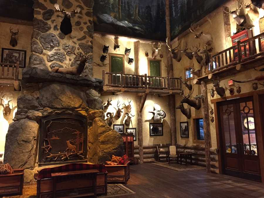 The lobby is designed to resemble a California mountain lodge and features native fish and wildlife mounts from the state and species from other areas of North America.
