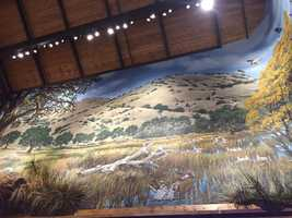 The Rocklin Bass Pro Shops features customized designs and wall murals that replicate the foothills and Tahoe region. Special lightning techniques allow the murals to take on a living, breathing quality.
