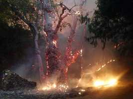 The fast-moving Butte Fire burning in Amador and Calaveras counties has gotten away from firefighters and continues to rip through thousands of acres of trees and dry brush amid multiple days of triple-digit temperatures. (Sept. 10, 2015)