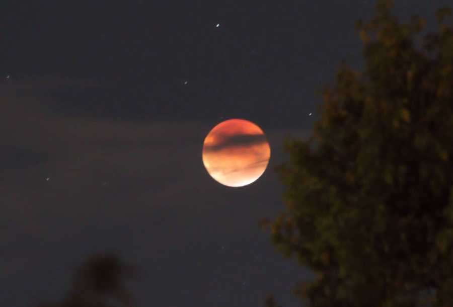 Stargazers enjoy a double celestial treat when a total lunar eclipse combines with a so-called supermoon. Check out some of the great photos of the beautiful moon that were captured by KCRA viewers. (This one was taken from Citrus Heights.)
