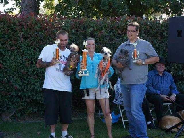 What: Dogtoberfest 2015Where: Mack Road Community CenterWhen: Sat Noon-4pmClick here for more information about this event.