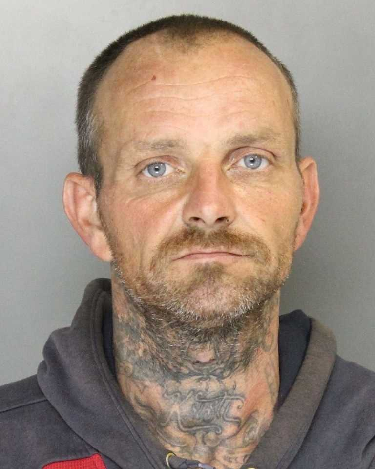 Christopher Wilcoxson was arrested on 90 counts of grand theft, conspiracy and possession of burglary tools, police said.