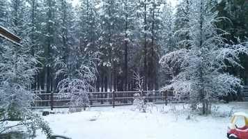 Gotta love seeing the fresh powder in the Sierra! (Nob. 2, 2015)
