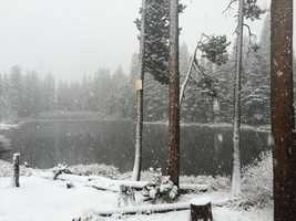 Snow came down Monday morning and began sticking at Donner Summit (Nov. 2, 2015)