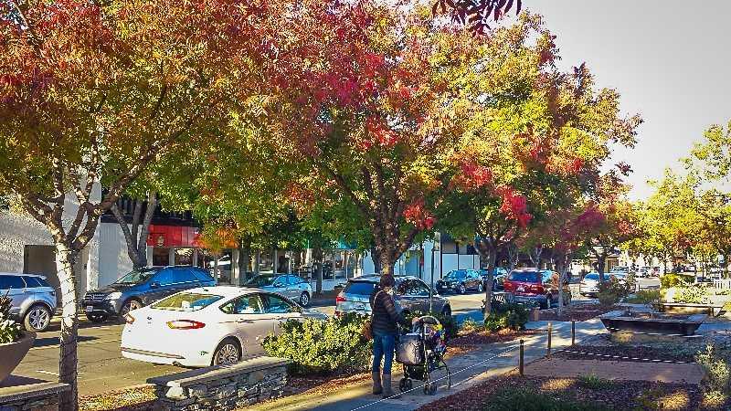 Downtown Los Altos in the San Francisco Bay Area.