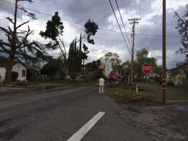 A funnel cloud that moved through Denair on Sunday, Nov. 15, 2015 downed trees on Zeering Road as it moved east out of the city, the Stanislaus Sheriff's Department said.