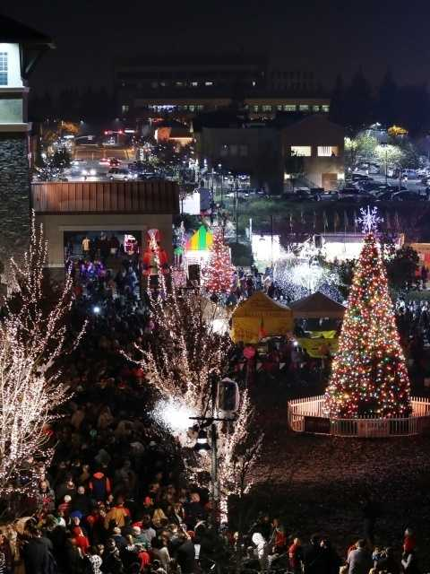 What: Rancho Cordova's Christmas Tree LightingWhere: Village Green ParkWhen: Sun 4pm-7:30pmClick here for more information about this event.