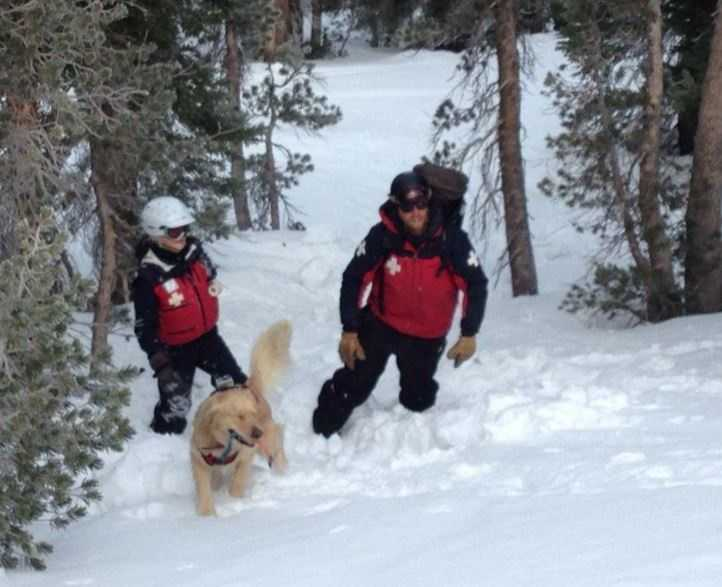 Dogs and their handlers underwent avalanche training in January while there was still snow in the Sierra.