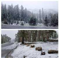 Snow in July? You got it! These pics taken by #caltrans show fresh powder falling on Highway 108 at #sonorapass. More thunderstorms are moving through #NorCal this afternoon. Track the wet weather with interactive radar on the #KCRA app and KCRA.com. #kcrawx #kcra3 #snowinjuly #norcalsnow #summerstorms #snow