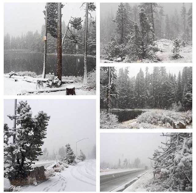 Who doesn't love seeing this? Fresh powder is blanketing the #Sierra to kick off #November! One Tahoe-area ski resort already announced it will be opening Wednesday. Get your #skis and #snowboards ready for what will hopefully be a wet #winter. Photos: #KCRA's Brian Hickey at #DonnerSummit // #nofilter #sierrasnow #kcra3 #kcra3 #tahoe #snow #snowflakes #interstate80 #letitsnow