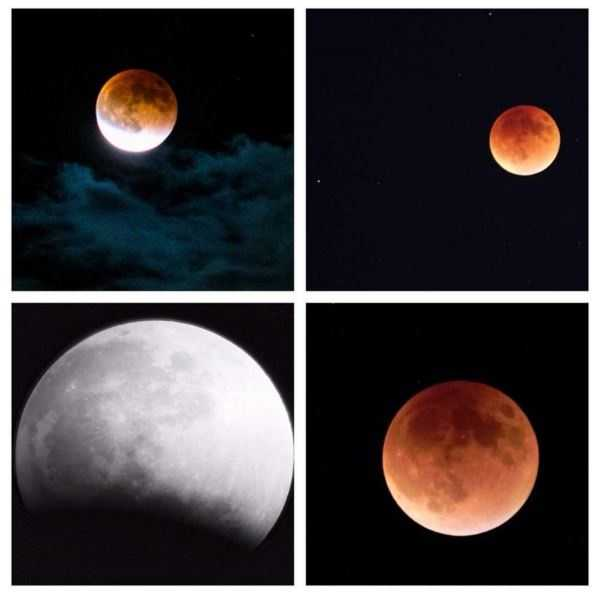 Did you see it? The rare #supermoon appeared last night in #NorCal (for those who didn't have too many clouds). #KCRA viewers sent in some pretty awesome photos. Share yours with us by using #supermoonkcra! // #supermoon2015 #moon #bloodmoon #eclipse #beautiful #redmoon #kcra3 #kcrawx