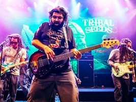 What: Tribal SeedsWhere: Ace of SpadesWhen: Sun 7pmClick here for more information about this event.