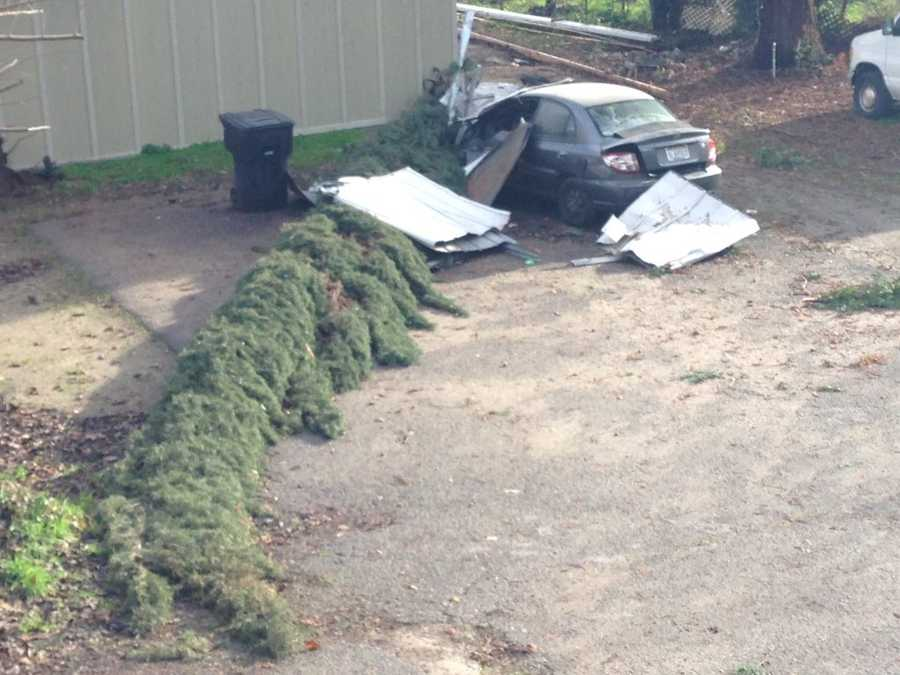 A downed tree damaged a neighbor's home and car in Oakdale. (Jan. 19, 2016)