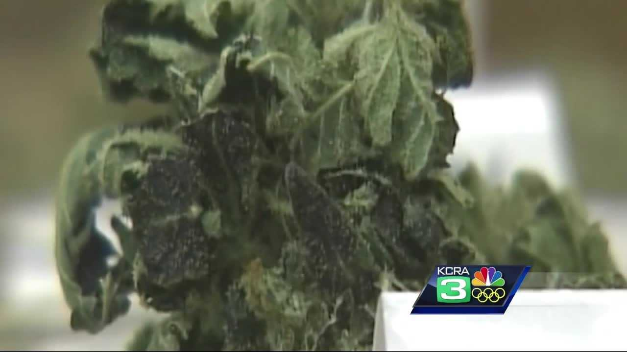 City leaders are debating Tuesday night about a plan to use money from marijuana taxes to fund programs for at-risk children in Sacramento.