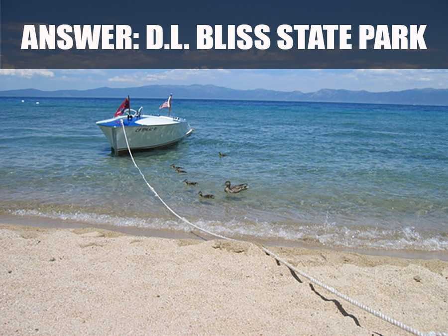 D.L. Bliss State Park is on the western shore of Lake Tahoe in California's Sierra Nevada, just 17 miles south of Tahoe City. (Source: https://sierrastateparks.org/visit/dl-bliss-state-park)