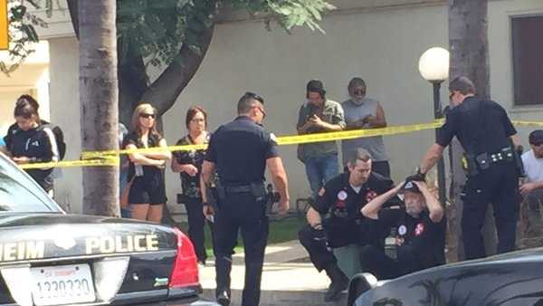 Two counter-protesters were stabbed in separate incidents during a Ku Klux Klan protest in Anaheim.