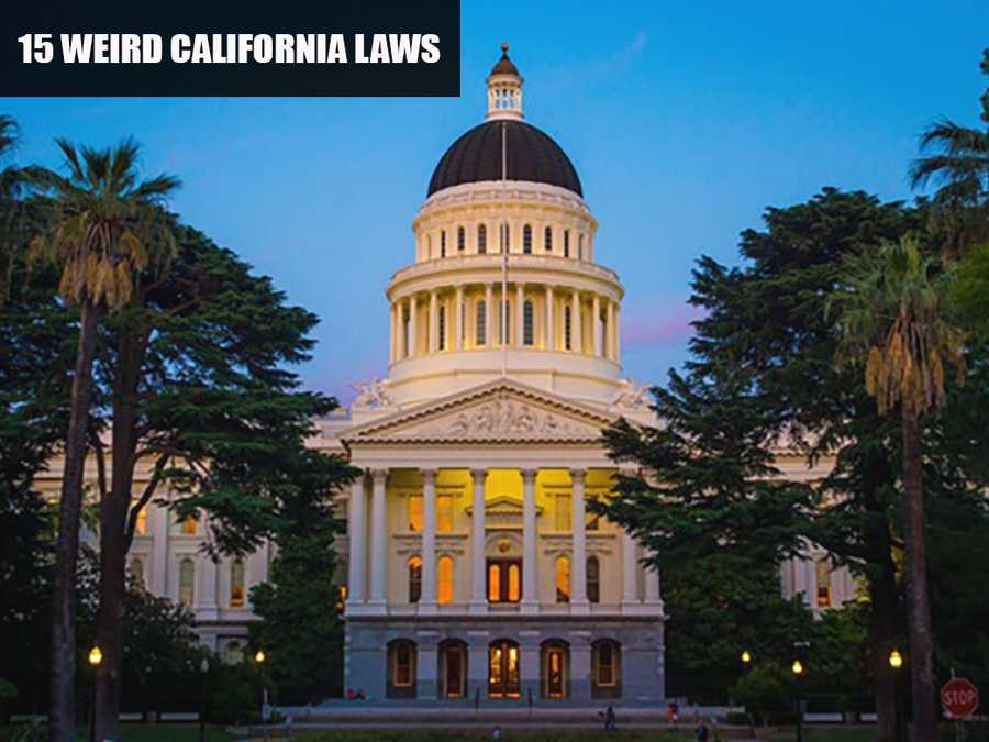 Many laws are passed in California that range from eyebrow raisers to just plain weird. Here are 15 laws that exist in the Golden State.