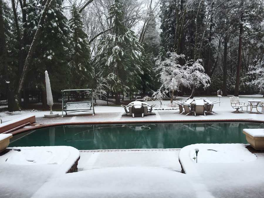 Snow flakes fell as low as Cedar Ridge on Monday morning, creating a beautiful shot in this backyard.