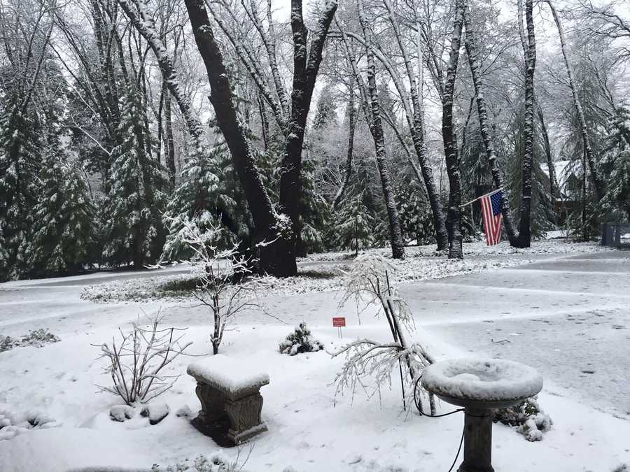 Here's another shot from Cedar Ridge in Nevada County.