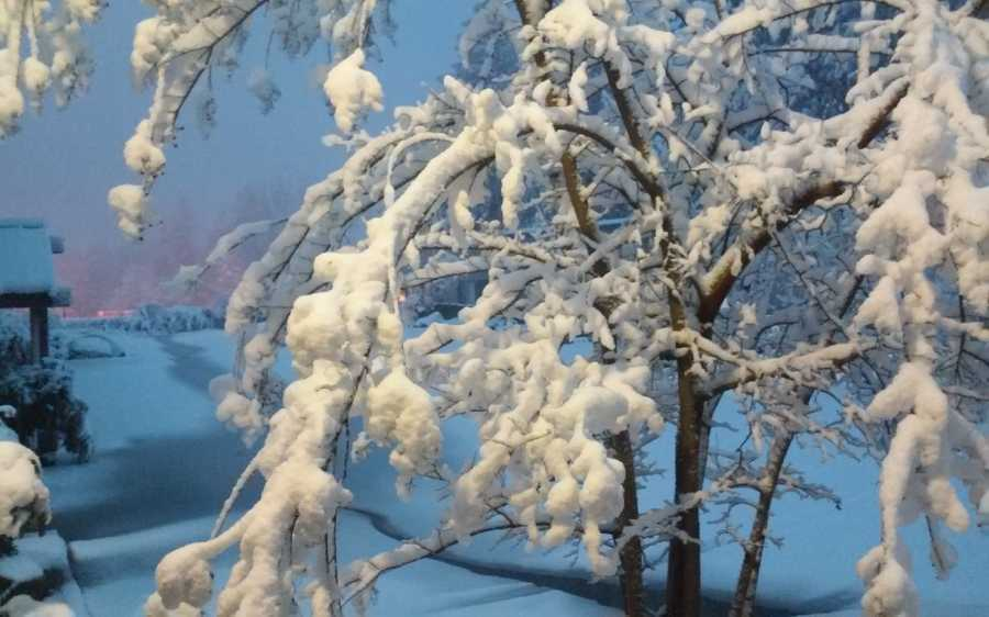 Grass Valley also received a decent blanket of snow.
