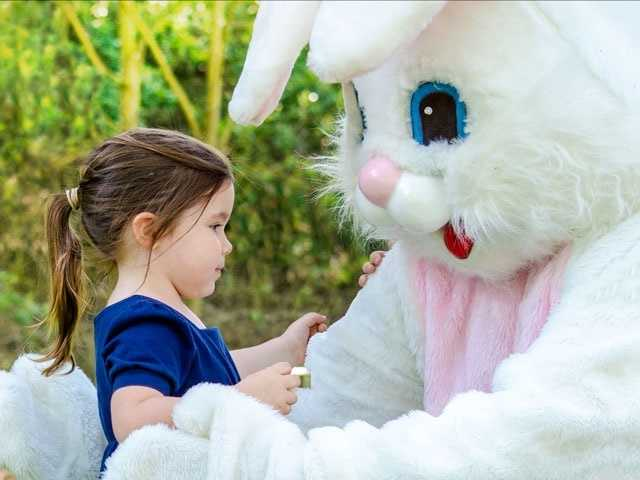 What: Easter Egg Express TrainWhere: Sacramento River Train - West SacramentoWhen: Sat 10am&#x3B; Sun 1:30pmClick here for more information about this event.