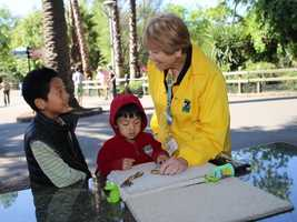 What: Earth FestWhere: Sacramento ZooWhen: Sat 9am-4pmClick here for more information about this event.