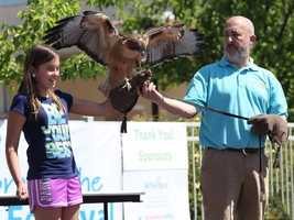 What: Celebrate the Earth FestivalWhere: Roseville Utility Exploration CenterWhen: Sat 10am-3pmClick here for more information about this event.