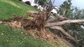 Storm damage in Hickman.