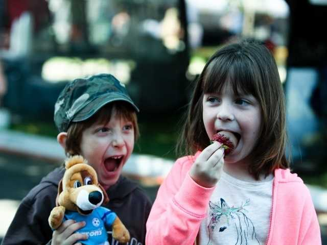 What: BerryFest Strawberry FestivalWhere: Placer County Fairgrounds & Event CenterWhen: Sat & Sun 10am-6pmClick here for more information about this event.