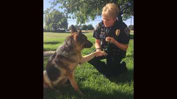 Galt Police Officer Sylvia Coelho and Freeway Frida share a tender moment.