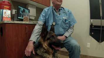 Freeway Frida with veterinarian Dr. Mike Johnson of VCA Bradshaw Animal Hospital in Elk Grove.