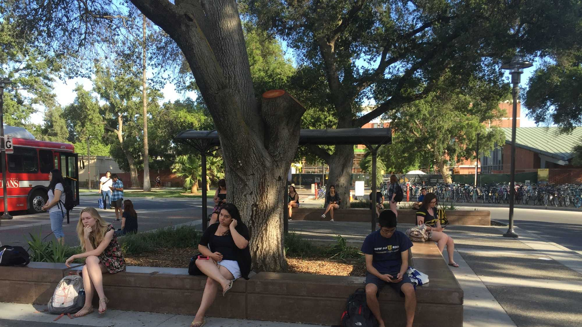 Students sit on UC Davis campus on Wednesday, June 2, 2016.