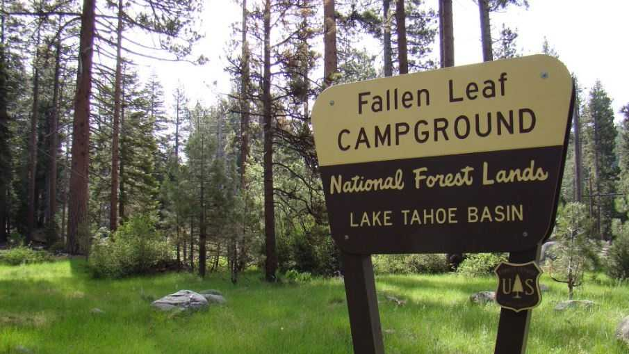 Fallen Leaf Campground (June 8, 2016)