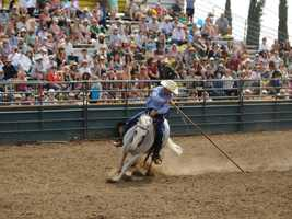 What: Western States Horse ExpoWhere: Cal ExpoWhen: Fri & Sat 9am-9pm, Sun 9am-5pmClick here for more information about this event.