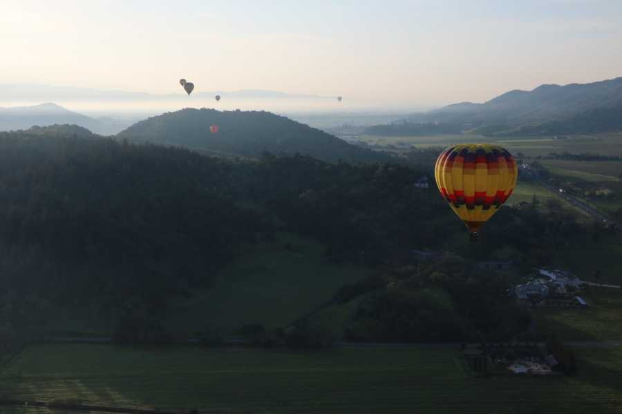 """You've got to take a tour over Napa Valley in a hot air balloon. You'd be surprised to know that 13 people fit in our bucket and went along with us for the ride.""--Kathy Park, anchor/reporter"
