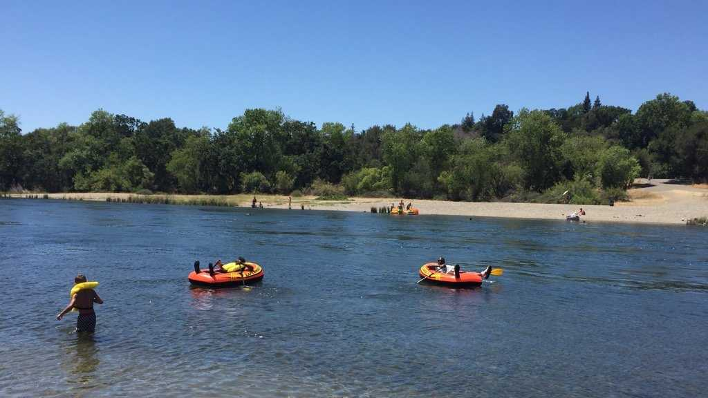 Park rangers arrested six people during the unauthorized Rafting Gone Wild event at the American River Saturday.