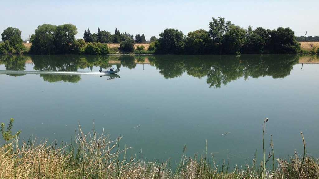 California water fix project