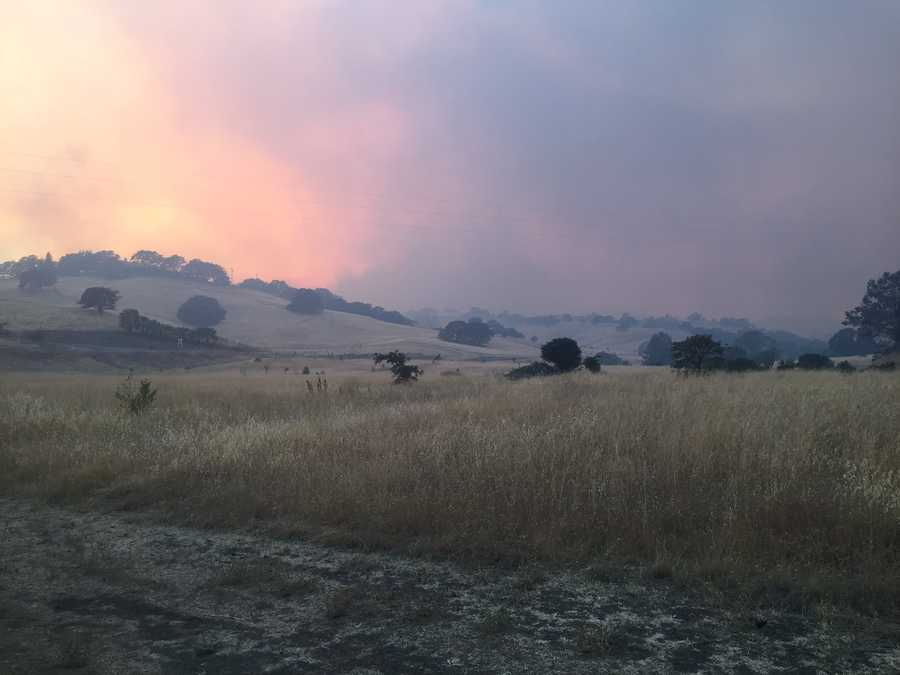 There is lots of dry vegetation in the area and smoke is filling the air.