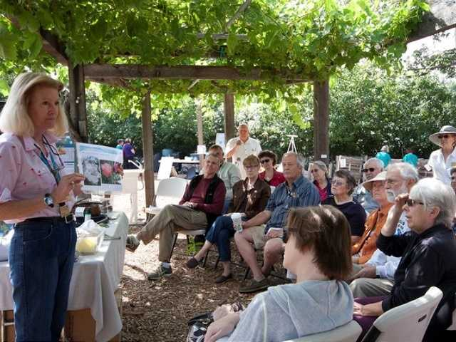 What: Harvest Day 2016: A Gardener's Dream DayWhere: Fair Oaks Horticulture CenterWhen: Sat 8am-2pmClick here for more information about this event.