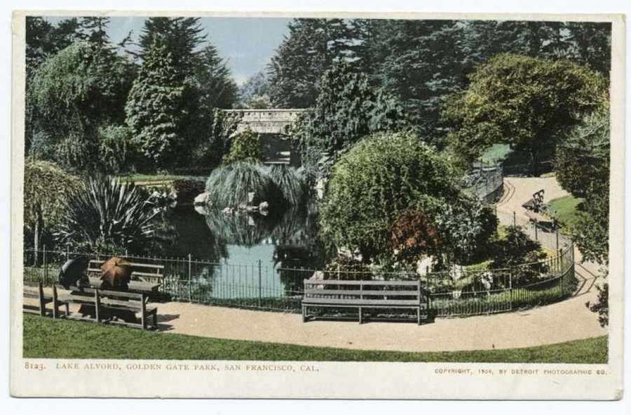 A postcard from the Detroit Publishing Company shows the Alvord Lake Bridge in Golden Gate Park.