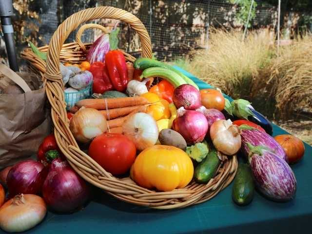 What: Soil Born Farms Autumn Equinox CelebrationWhere: Soil Born Farms American River RanchWhen: Sat 4:30pm-8:30pmClick here for more information about this event.