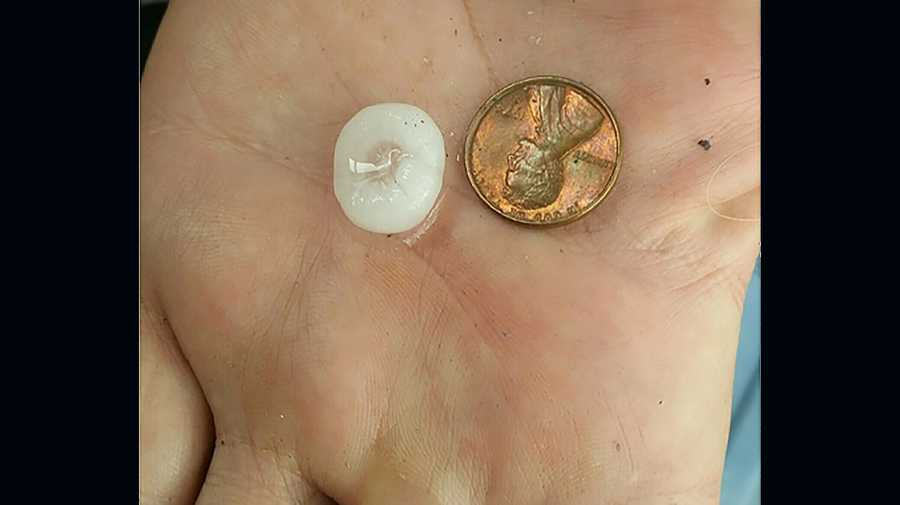 Size of hail in Granite Bay