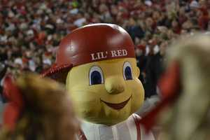 Li'l Red hanging out during the Wisconsin game.